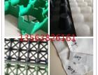 园林绿化资阳30塑料夹层板+四川耐老化滤排水板