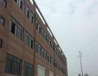 服装城2800~11300平米标准厂房出租