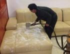 承接企事业单位沙发地毯清洗及家庭沙发地毯清洗