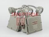BAJ52消防专用防爆应急灯 2 10W防爆双头LED应急灯