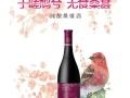 尚果纯酿桑椹酒半干型保健酒