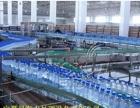 水处理设备招商加盟 0加盟费 质量保证直线灌装机