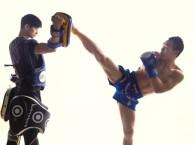 跆拳道散打武术针对性趣味教学