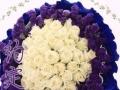 安阳鲜花店预定鲜花花束开业花篮实体店免费送货