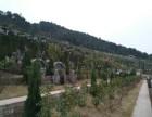 重庆市仙女山公墓 市合法性公墓 风水好 交通方