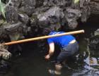 深圳华南城鱼缸鱼池清洗护理 鱼缸维修