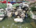 承接魚池園林設計及施工!批發零售進口錦鯉