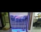 天王水族鱼缸,水族箱