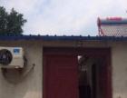 朱仙庄老煤气站后面一处狗场出售或卖