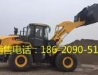 丰顺柳工装载机/铲车价格 -柳工系列销售咨询电话