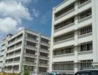 白蕉科技园8000平方1-5楼厂房分割招租