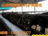 临沂肉驴养殖合作社