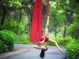 唐山抒情钢管舞爵士舞,学习舞蹈的同时拥有好身材提升气质