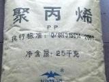 燕山石化聚丙烯三元共聚PPC5908今日