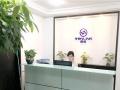专业办理香港/深圳/海外注册公司年审/做帐审计报税