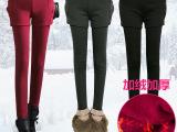 秋冬季打底裤女 女士加绒打底裤 加厚打底裤 韩国打底裤 小脚裤