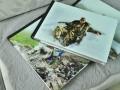 佛山相册制作,影楼款式的水晶相册制作,聚会相纸相册制作厂家