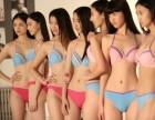 秦淮艺校 暑假舞蹈培训班 一一 成人模特
