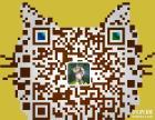 掉线棕虎斑加菲猫健康活泼宠物首选