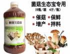 益富源菌菇生态宝种植香菇草菇效果好厂家直销电话多少