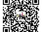 苏州专业马术教学