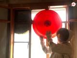 广州清理蜂窝公司,家里有马蜂筑巢要尽快清除掉