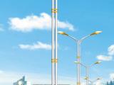LED路灯户外灯3米4米5米7米道路灯高杆灯厂区A字臂路灯 01