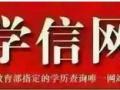 枣庄函授成人高考报名指定点五区一市均可报名