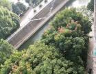 南城门黄金地段 可做办公培训 商用居住 70平米
