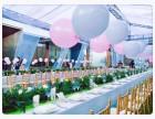 米罗阳光承接各式冷餐会议茶歇私宴派对餐饮服务活动