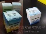 支原体PCR检测试剂盒 检测支原体污染 灵敏度高 使用方便