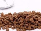 進口幼貓糧2kg 貓糧 寵物貓糧 貓糧批發 干貓糧 歐冠貓糧