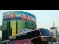 郑州中心站大巴托运部宠物狗全国新乡