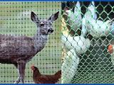 塑料铁马厂家供应塑料网  万用网