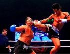 通州哪里有有专业泰拳去龍圣搏击专业培训基地