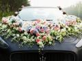 佳缘婚车用专业和真诚为您的婚礼保驾护航来电优惠
