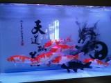 北京魚缸器材配置