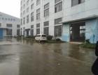 娄塘镇一楼厂房570平米 形象好 交通方便 有牛角