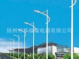 【厂家直销】供应高质量道路照明灯 农村道路灯,7米单臂LED路灯