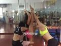教练考证舞蹈演员商演零基础速成班表演班包教包会包
