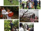 上海农家乐一日游推荐 采桑葚/五彩小番茄/西瓜 划船烧烤垂钓