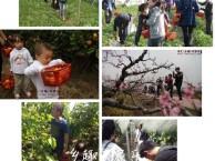 上海农家乐一日游推荐 采葡萄摘西瓜 钓龙虾划船烧烤唱歌