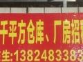 大山江开发区 厂房 3000平米招租