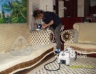 沙发清洗首选美吉亚环保科技公司