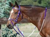 PVC马水勒缰, 马笼头, 马具,骑马用品