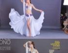 金米舞蹈暑假周末肚皮舞教练班开始招生啦