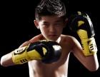 上海武术搏击培训5-17岁兴趣班,限时0元体验