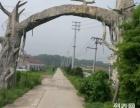 南京六合512亩土地转让