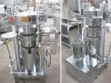 河南佰乾优质液压榨油机高效节能180型