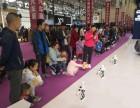慶典活動會議設備租賃 機器人暖場 微信簽到 知識競賽系統